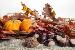 Κάστανα και κολοκύθες πάνω από τα ξηρά φύλλα στοκ εικόνα με δικαίωμα ελεύθερης χρήσης