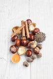 Κάστανα φθινοπώρου, βελανίδια και ραβδιά κανέλας δάσος ροδιών Οκτωβρίου σταφυλιών διακοσμήσεων κάστανων φθινοπώρου Στοκ φωτογραφίες με δικαίωμα ελεύθερης χρήσης