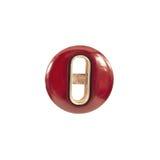 Κάστανο κουμπιών με το ένθετο μετάλλων Στοκ Φωτογραφίες