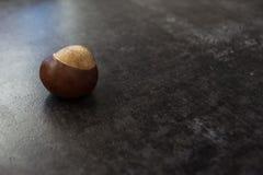 Κάστανο σε μια γκρίζα, κατασκευασμένη επιφάνεια στοκ φωτογραφίες με δικαίωμα ελεύθερης χρήσης