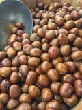 Κάστανο ψητού στοκ φωτογραφία με δικαίωμα ελεύθερης χρήσης