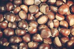 Κάστανο Στοκ εικόνα με δικαίωμα ελεύθερης χρήσης