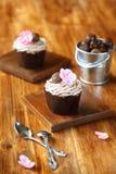 Κάστανο Mont Blanc Cupcakes Στοκ εικόνα με δικαίωμα ελεύθερης χρήσης