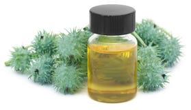Κάστορας - πετρέλαιο με τα πράσινα φασόλια Στοκ Εικόνες