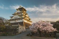 κάστρο Ιαπωνία Οζάκα Στοκ Φωτογραφίες