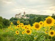 Κάστρο μαλακίων στην Άνω Αυστρία, Perg im Muehlviertel Στοκ Εικόνα