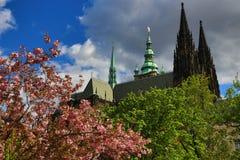 Κάστρο της Πράγας, HradÄ  οποιοιδήποτε, Πράγα, Δημοκρατία της Τσεχίας Στοκ φωτογραφία με δικαίωμα ελεύθερης χρήσης