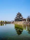 Κάστρο του Ματσουμότο με το άνθος sakura, Ματσουμότο, Ιαπωνία 10 Στοκ εικόνα με δικαίωμα ελεύθερης χρήσης