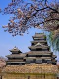 Κάστρο του Ματσουμότο με το άνθος sakura, Ματσουμότο, Ιαπωνία 5 Στοκ φωτογραφία με δικαίωμα ελεύθερης χρήσης
