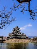 Κάστρο του Ματσουμότο με το άνθος sakura, Ματσουμότο, Ιαπωνία 14 Στοκ Εικόνες