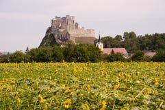 Κάστρο Beckov - Σλοβακία στοκ εικόνες