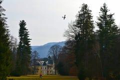 Κάστρο Betliar Στοκ φωτογραφία με δικαίωμα ελεύθερης χρήσης