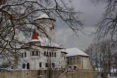 Κάστρο Budatin στο χειμώνα, Σλοβακία Στοκ Εικόνες