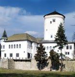 κάστρο budatin Στοκ φωτογραφία με δικαίωμα ελεύθερης χρήσης