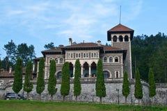 κάστρο cantacuzino Στοκ Εικόνες