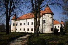 Κάστρο Luznica Στοκ εικόνα με δικαίωμα ελεύθερης χρήσης