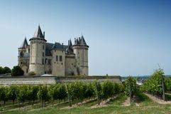 Κάστρο Saumur στοκ φωτογραφία με δικαίωμα ελεύθερης χρήσης