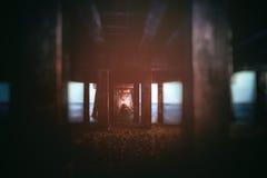 Κάτω από την αποβάθρα Στοκ φωτογραφίες με δικαίωμα ελεύθερης χρήσης