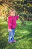 Κάτω από το δέντρο πεύκων Στοκ φωτογραφίες με δικαίωμα ελεύθερης χρήσης