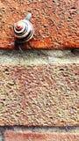 κάτω από το μακροχρόνιο τρόπ&om Στοκ Εικόνα