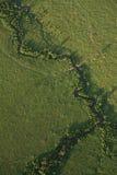 κάτω από mara το masai επάνω στην όψη Στοκ εικόνες με δικαίωμα ελεύθερης χρήσης