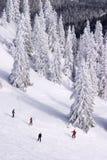 κάτω να κάνει σκι ανθρώπων κλίση Στοκ φωτογραφία με δικαίωμα ελεύθερης χρήσης