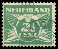 Κάτω Χώρες, πουλιά, πετώντας περιστέρι Στοκ Εικόνες