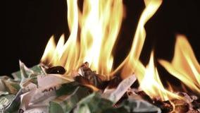 Κάψιμο εκατό ευρο- τραπεζογραμματίων φιλμ μικρού μήκους