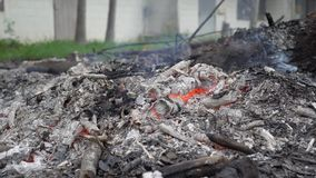 Κάψιμο ενός κομματιού του ξύλου από ένα δέντρο Μμένη αλλά αημένη τέφρα με μια φλεμένος φλόγα Υπερθέρμανση του πλανήτη εννοιών ατμ φιλμ μικρού μήκους
