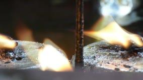 Κάψιμο ελαιολυχνιών κανένας ήχος απόθεμα βίντεο