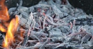 Κάψιμο καυσόξυλου στον ορειχαλκουργό Προετοιμασία σχαρών Καμμένος κινηματογράφηση σε πρώτο πλάνο φλογών απόθεμα βίντεο