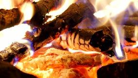 Κάψιμο ξυλάνθρακα και καυσόξυλου Θρύψαλο ξύλων καψίματος στο ζεστό αέρα και τον ευγενή φθορισμό φλογών απόθεμα βίντεο