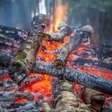 Κάψιμο πυρών προσκόπων σε ένα δάσος Στοκ φωτογραφία με δικαίωμα ελεύθερης χρήσης