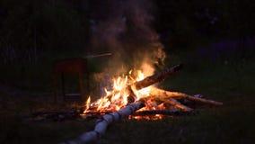 Κάψιμο πυρών προσκόπων στο δάσος θερινής νύχτας - διακινούμενη έννοια απόθεμα βίντεο