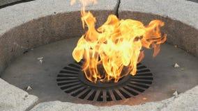 Κάψιμο της αιώνιας φλόγας στο Κρεμλίνο την ημέρα νίκης απόθεμα βίντεο