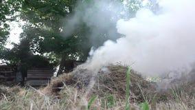 Κάψιμο της ξηράς χλόης σε μια πυρκαγιά στον κήπο φιλμ μικρού μήκους