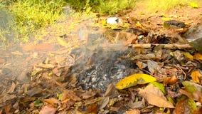 Κάψιμο των ξηρών φύλλων στο έδαφος απόθεμα βίντεο