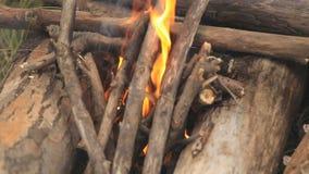Κάψιμο φωτιών έξω των κλάδων, κινηματογράφηση σε πρώτο πλάνο φιλμ μικρού μήκους