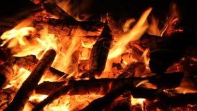 Κάψιμο φωτιών σε ένα σκοτεινό υπόβαθρο απόθεμα βίντεο