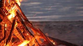 Κάψιμο φωτιών στο riverbank στο ηλιοβασίλεμα φιλμ μικρού μήκους