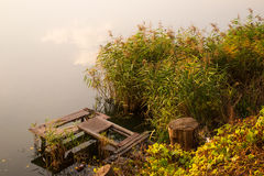 Κάλαμος εξεδρών και νερού Στοκ εικόνες με δικαίωμα ελεύθερης χρήσης