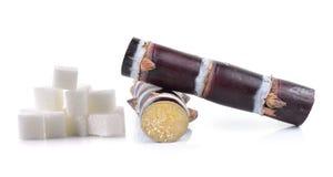 Κάλαμος ζάχαρης και κύβος ζάχαρης στο άσπρο υπόβαθρο Στοκ φωτογραφία με δικαίωμα ελεύθερης χρήσης