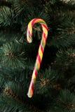 Κάλαμος καραμελών Χριστουγέννων Στοκ Εικόνα
