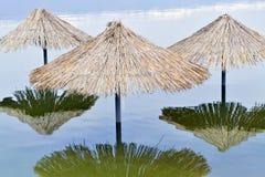 Κάλαμος sunshades Στοκ φωτογραφία με δικαίωμα ελεύθερης χρήσης
