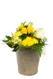 Κάδος 10 λουλουδιών Στοκ Εικόνες