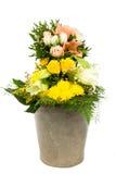 Κάδος 11 λουλουδιών Στοκ εικόνα με δικαίωμα ελεύθερης χρήσης