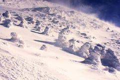 Κάλυμμα του χιονιού και του πάγου Στοκ εικόνα με δικαίωμα ελεύθερης χρήσης