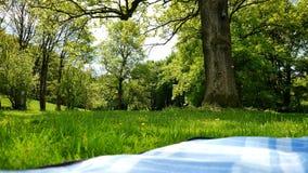 Κάλυμμα Picknick στο πάρκο Στοκ φωτογραφία με δικαίωμα ελεύθερης χρήσης