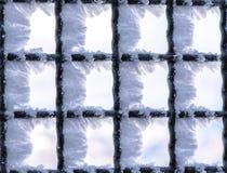 κάλυψη παγωμένη διανυσματικός χειμώνας προτύπων Στοκ εικόνες με δικαίωμα ελεύθερης χρήσης