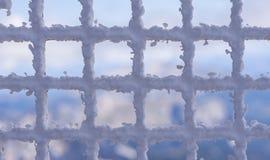 κάλυψη παγωμένη διανυσματικός χειμώνας προτύπων Στοκ Φωτογραφία